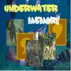 Underwater Memory