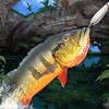 Cave Lake Fishing