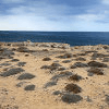 Rocky Beach Jigsaw