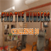 Hidden Numbers 30