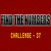 Hidden Numbers 37