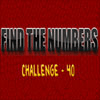 Hidden Numbers 40