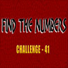Hidden Numbers 41