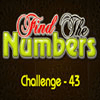 Hidden Numbers 43
